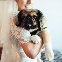 Наші наречені - Фото 220